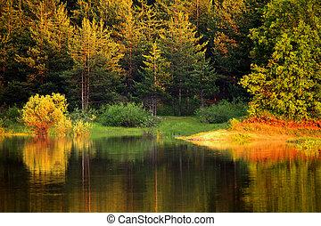 autumn bulgarian lake - autumn colorful lake in bulgarian ...