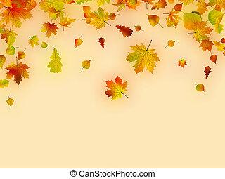 Autumn card of multicolor leafs.