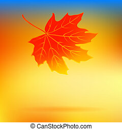Autumn card with falling leaf and soft lights