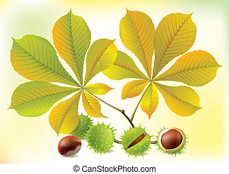 Autumn chestnuts and leaves. Contains transparent objects....