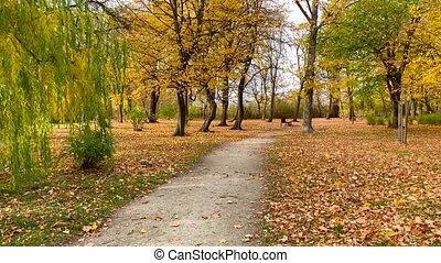 Autumn city park and trail - 4K Amazing autumn city park or...