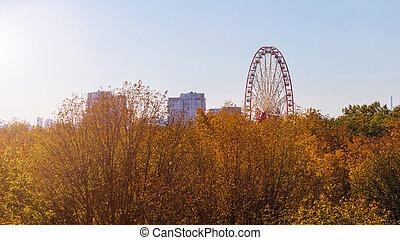 Ferris wheel and yellowed trees