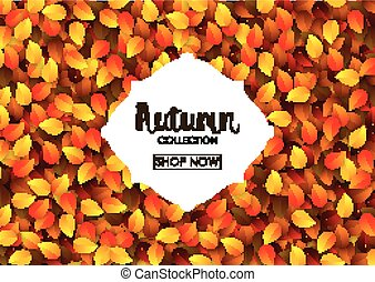 Autumn collection sale banner
