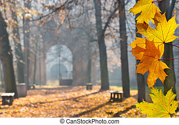 autumn colonade with a gateway