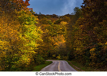 Autumn color along the Blue Ridge Parkway, near Blowing Rock, No