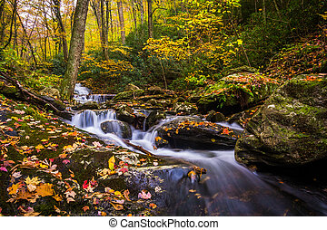 Autumn color and cascades on Stoney Fork, near the Blue Ridge Parkway, North Carolina.
