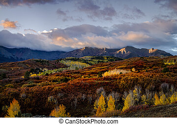 Autumn Color in San Juan of Colorado near Ridgway and ...