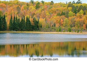 Autumn Color On Josephine Lake, Itasca State Park - Peak ...