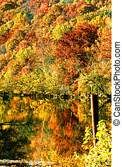 Autumn Color Reflected in Arkansas River - Fall colors are ...
