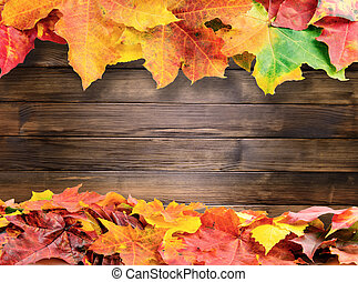 autumn colored fall leaves on wooden background