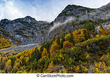 Autumn colorful fall trees high mountains scenery in the Alps