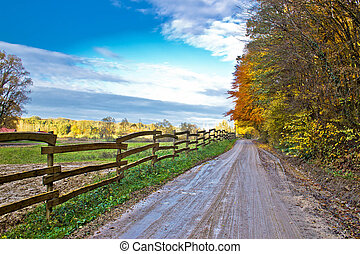 Autumn colorful mountain dirt road