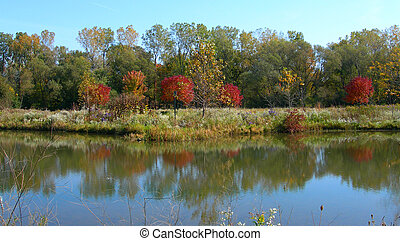 Autumn colors and pond