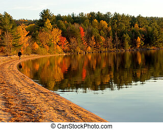 Autumn colors - Autumn forest on the lake. Fall colors ...