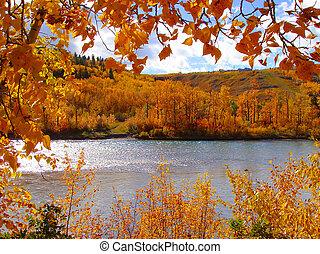 Autumn colors - Colorful fall foliage along the a river