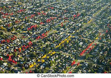 Autumn Colors in Neighborhood