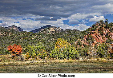 Autumn Colors in the Foothills