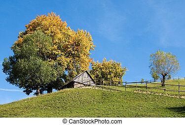 Autumn colors in Transylvania, Romania - Autumn is coming in...