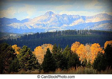The colors and views in the Beartooth Mountains of Montana during fall season.