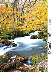 Autumn Colors of Oirase Stream