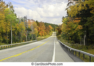 Autumn colors on the road