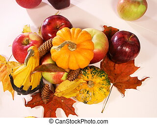 autumn colors - pumpkins, gourds, leaves, and pine cones on...