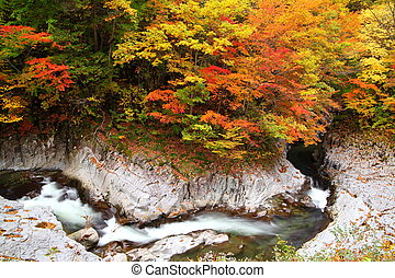 Autumn colours of valley