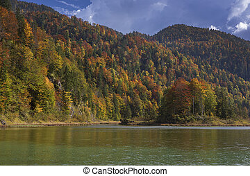 Autumn colours on trees at lake Weitsee, Bavaria Germany