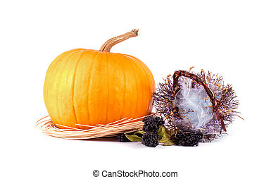 Autumn composition of pumpkins