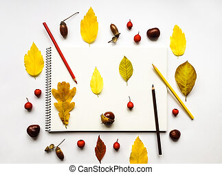Autumn composition with album and pencils, decorated with yellow leaves, berries, chestnuts. Flat lay, top view