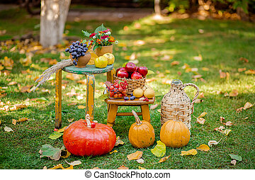 Autumn composition with apples, pumpkin and grapes located in the garden. Autumn harvest.
