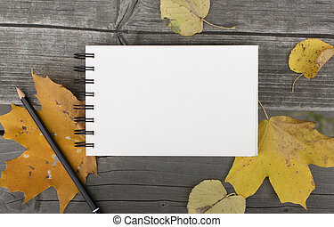 Autumn composition with blank notebook and fallen leaves