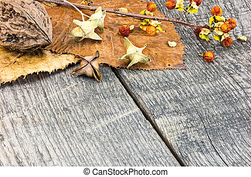 leaves, plants and nuts on grunge wooden background