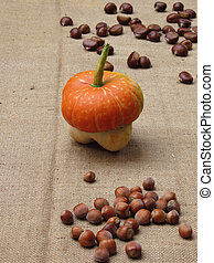 Autumn composition with pumpkin, hazelnuts and chestnuts on jute fabric background