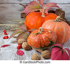 Autumn composition with pumpkin