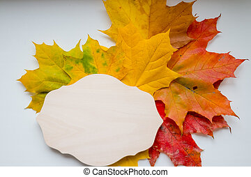 Autumn composition with wooden blackboard and colorful maple leaves on white background.Table decorated with yellow and green leaves, rowan berries. Fall still-life with space for text. Flat lay, top view, copy space