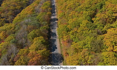Autumn concept. Aerial shot of a road among hills with lots of yellow and red colored trees surrounding the road