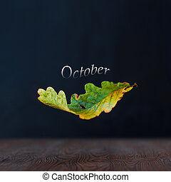 Autumn concept. October. Falling oak leaves. Dark background and wooden surface.