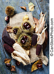 Autumn concept with Chestnuts and corn