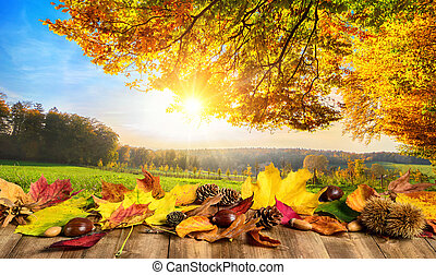 Autumn concept with leaves and landscape