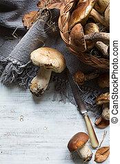 autumn cooking background; seasoning forest organic porcini Mushroom;
