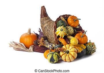 autumn cornucopia - Shot of a autumn themed collection of...