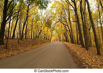 This small road is located in Illinois and the photo was taken just as the autumn foliage was changing colors.