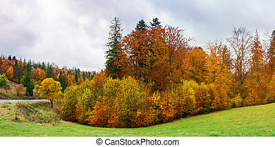 autumn countryside on a rainy overcast day - panorama of...