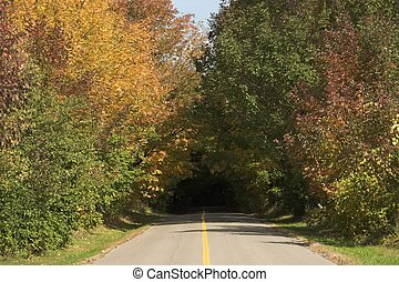 Autumn Countryside Road