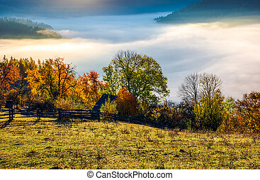 autumn countryside with valley full of thick fog. gorgeous...