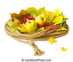 Autumn crop of fruit