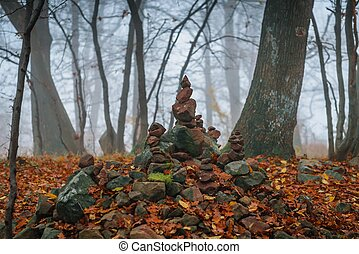 Autumn day in the enchanted forest at fall