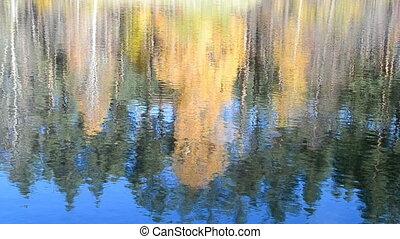 autumn daylight landscape, fall - fall daylight landscape,...