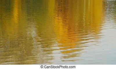 Autumn daylight landscape reflected in water - Autumn...